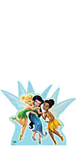 Disney Fairies Group